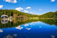 Гора и пуща Стоковые Фото