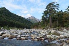 Гора и река Стоковая Фотография