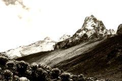 гора Кении Стоковое Изображение RF