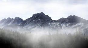 Гора Колорадо туманная стоковая фотография