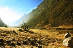 гора кордильер Стоковая Фотография RF