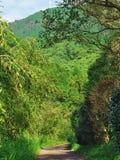 гора к путю Стоковые Фотографии RF