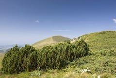 гора ландшафта Стоковые Изображения RF