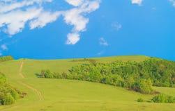 гора лужка стоковые фотографии rf