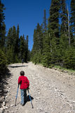 гора мальчика Стоковая Фотография RF