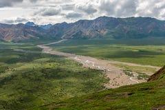 Гора национального парка ` s Denali Аляски ледниковая течет стоковые фотографии rf