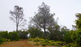 Гора над clould стоковое фото rf