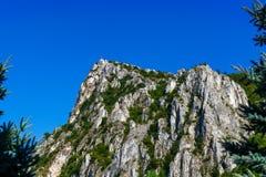Гора обрамленная деревом Стоковые Изображения RF
