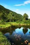 гора озера Стоковые Фото