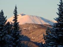 Гора лосей, Альберта в зиме стоковые фотографии rf