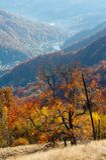 Гора осени прикарпатская, Rakhiv, Украина Стоковое фото RF