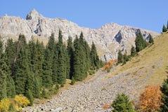 гора осени Стоковые Изображения RF
