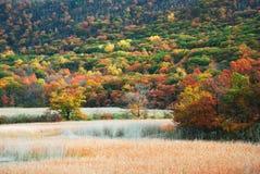 гора осени Стоковое Изображение RF