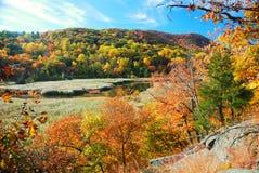 гора осени Стоковые Фото