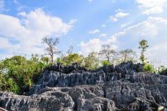 Гора парка коралла, национальный парк Doi Phaklong Стоковая Фотография RF