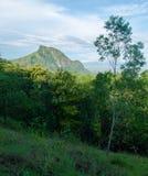 Гора под голубым небом и окруженная лесом Стоковые Изображения RF