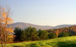 гора поля склоняла Стоковая Фотография RF