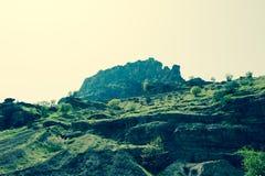 Гора предусматриванная в зеленой траве и небольших деревьях стоковая фотография rf