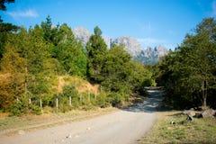 Гора, природа и дорога Стоковая Фотография