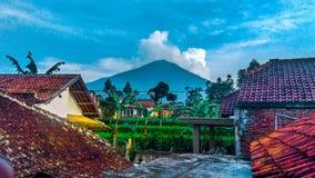 Гора природы стоковая фотография rf