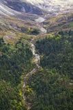 гора пущи Стоковое фото RF