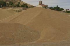 Гора пшеницы после сбора зернокомбайна Стоковая Фотография RF