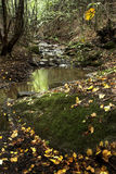 гора ручейка Стоковые Изображения RF