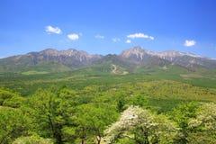 Гора свежего зеленого цвета Стоковые Изображения RF