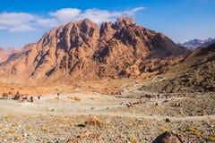гора Синай Египет Стоковое фото RF
