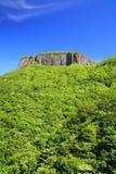 Гора скалы с свежей зеленью Стоковые Фото