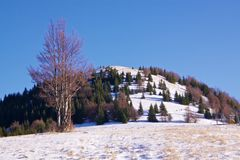 гора снежная Стоковая Фотография