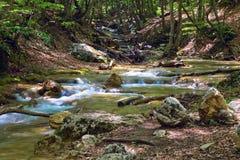 гора струится река Стоковое Фото