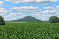 Гора сулоя, центральная богемская зона взгляд городка республики cesky чехословакского krumlov средневековый старый Стоковое фото RF
