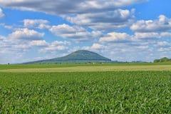 Гора сулоя, центральная богемская зона взгляд городка республики cesky чехословакского krumlov средневековый старый Стоковое Изображение RF