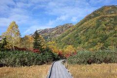 Гора сценарная, nagano Япония падения стоковая фотография rf
