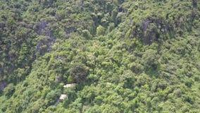 Гора с домами спрятанными в глубоком виде с воздуха джунглей сток-видео