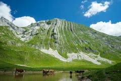 Гора с нашивками Стоковое Изображение