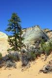 Гора с перекрестными настоящими слоями покрашенного песчаника Стоковое Изображение RF