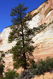 Гора с перекрестными настоящими слоями покрашенного песчаника Стоковое фото RF