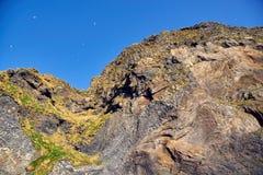 Гора с птицами n стоковое фото
