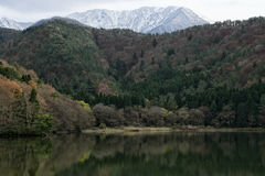 Гора с снегом стоковое фото rf