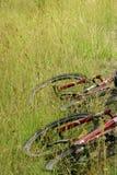 гора травы bikes Стоковая Фотография RF