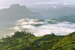 гора тумана над долиной Стоковые Изображения RF