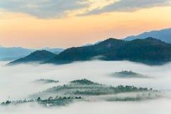 гора тумана Стоковое Фото