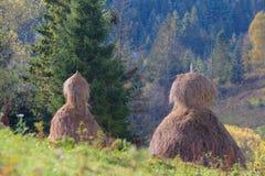гора Украина haystacks поля стоковое фото rf