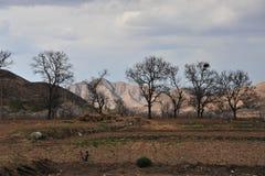 Гора & ферма стоковые изображения
