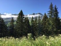 гора Франции стоковое фото rf