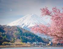 Гора Фудзи весной, вишневый цвет Сакура Стоковая Фотография