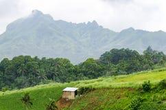гора хаты тропическая Стоковая Фотография