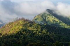 Гора холма леса облака Стоковые Изображения RF
